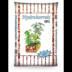 Hydrokorrels van Egmond
