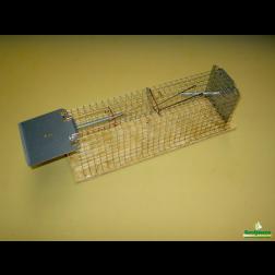 Rattenval tunnel model